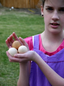 Abby and Eggs